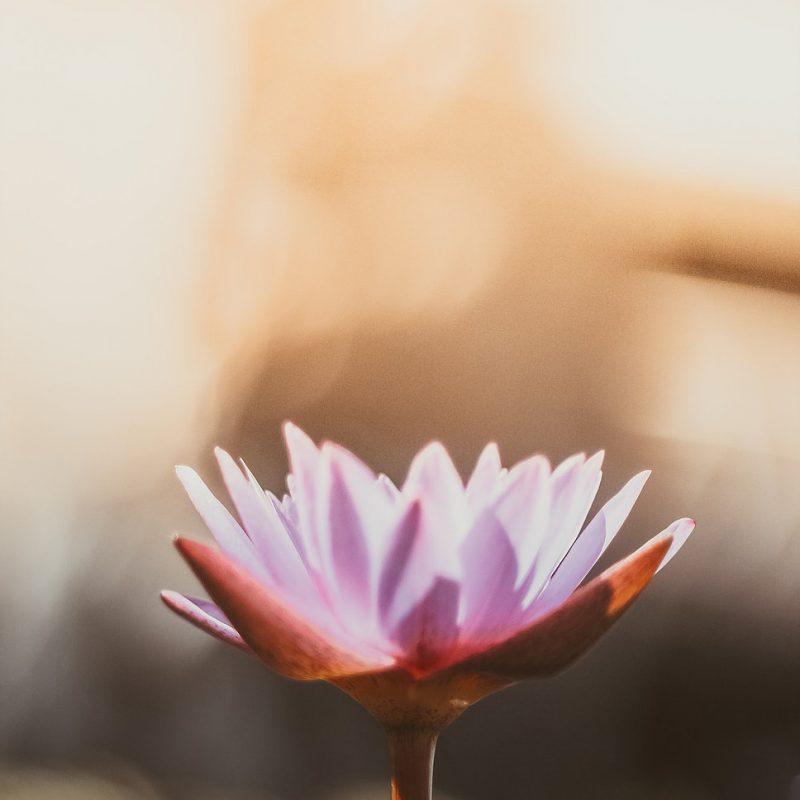 Meditation…isn't that really boring?