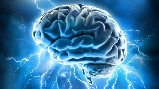 I held his brain in my hands … how handling a human brain helped me learn to meditate