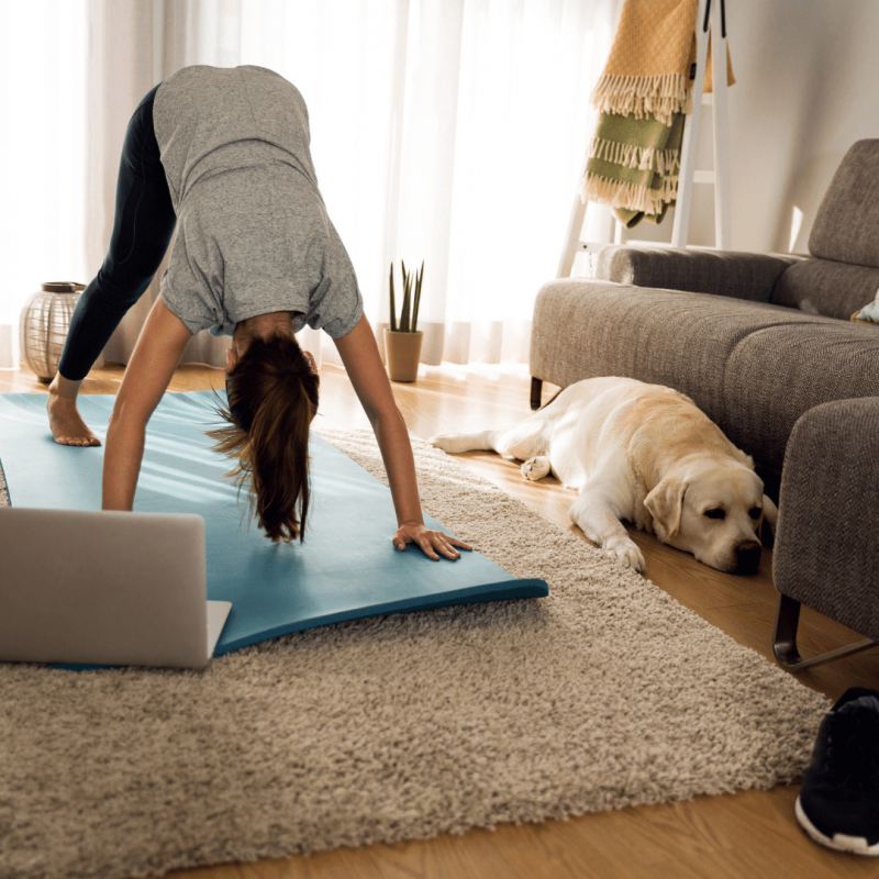 Getting the Best out of Online Yoga Classes