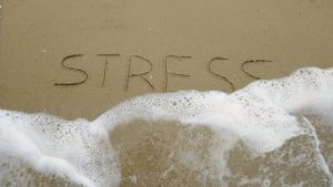 Read more about the article Guest Blog:  Stress Reduction for Fitness and Health