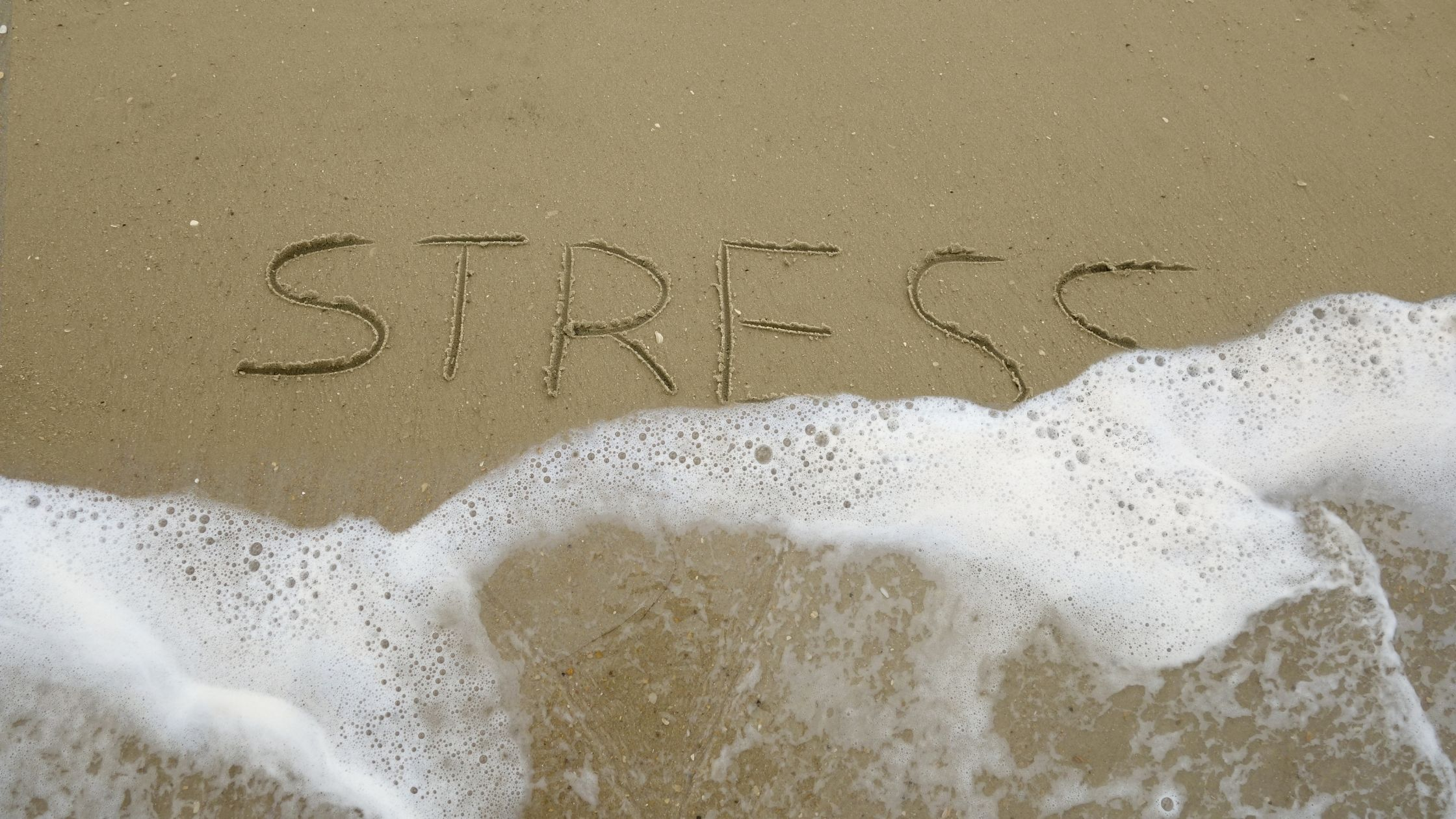 You are currently viewing Guest Blog:  Stress Reduction for Fitness and Health